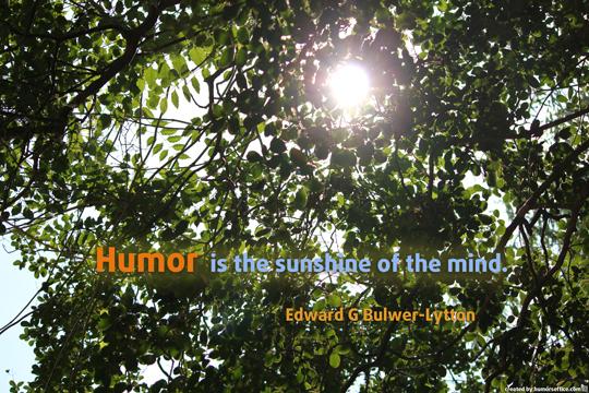 humor quotation edward g bulwer-lytton