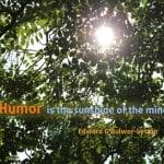 humor sunshine